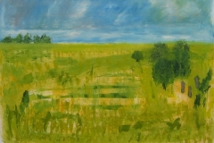 rusheen_the_plains_oil_on_linen_87cm_x_103cm_05_20120502_1132532649